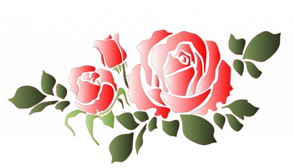 Роза А5